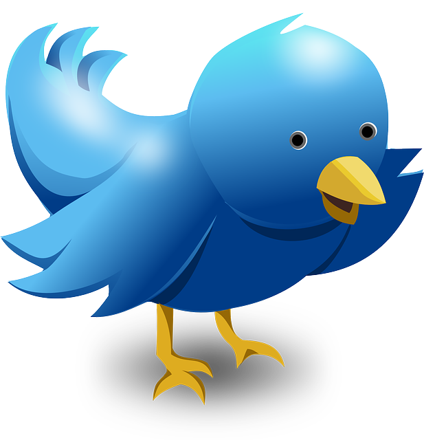 twitter tweet bird